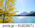 秋のカナディアンロッキー 黄葉の水鳥湖(ウォーターファウル・レイク)(バンフ国立公園 カナダ) 61828671