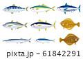 いろいろな魚のイラスト 61842291
