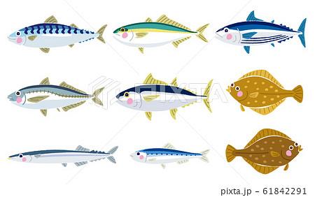 いろいろな魚のイラストのイラスト素材 [61842291] - PIXTA