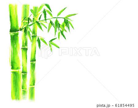 竹 竹林 イラスト 水彩 手描き 和  61854495