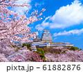 春爛漫の姫路城 61882876
