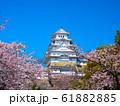 春爛漫の姫路城 61882885