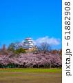 春爛漫の姫路城 61882908