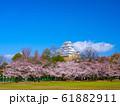 春爛漫の姫路城 61882911
