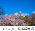 春爛漫の姫路城 61882913