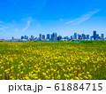 大阪梅田の超高層ビル街 61884715