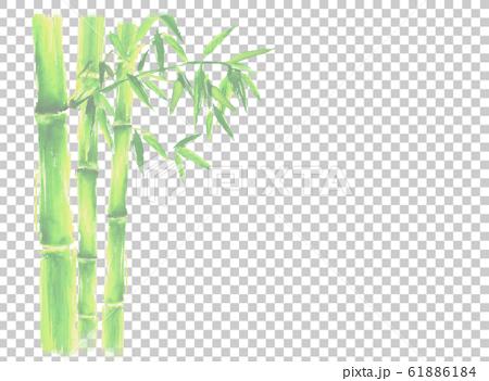 竹 竹林 イラスト 水彩 正月 年賀 手描き 和  61886184