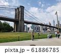 ニューヨークの橋の下で 61886785