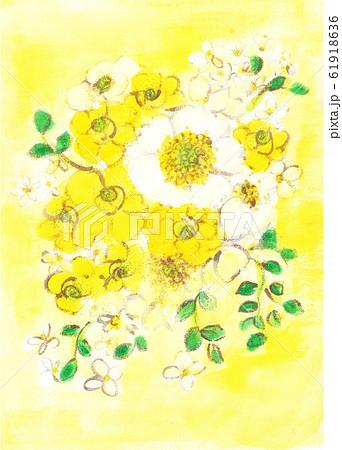 シュウメイギク(白いアネモネ)と黄色のラナンキュラス 黄色の背景 61918636