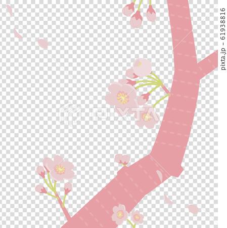 ピンク色の桜のイラスト(淡いトーン) 61938816