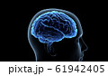 脳 頭脳 ブレイン 頭 あたま ヘッド マインド アイデア 3Dイラスト CG 61942405