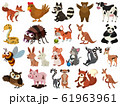 Set of isolated objects theme animals 61963961