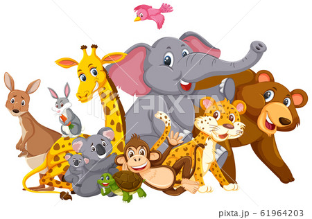 Many wild animals on white background 61964203