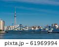 青洲橋と東京スカイツリー 61969994