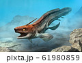 Xenacanthus from the Triassic era 3D illustration 61980859