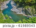 新緑の大歩危峡と遊覧船(徳島県三好市山城町) 61989343