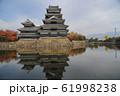 松本城 61998238