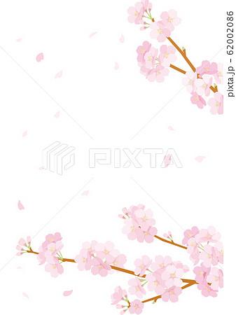 桜 背景 62002086