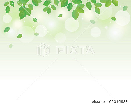 新緑の背景メッセージカード 62016883