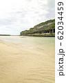 ニューカレドニア ロイヤルティ諸島 ウベア島 レキンの絶壁 62034459