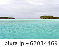 ニューカレドニア ロイヤルティ諸島 ウベア島 レキンの絶壁 62034469
