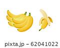 バナナ カットイラスト 62041022