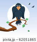 Raven 62051865