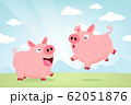 Jumping Pigs 62051876