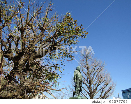 上野公園の西郷隆盛の銅像 62077795