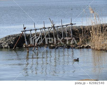 霞ヶ浦湖畔で見かけた足場材で作られた稲わらを干すオダ 62082540