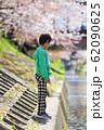 桜並木に佇む男児 62090625