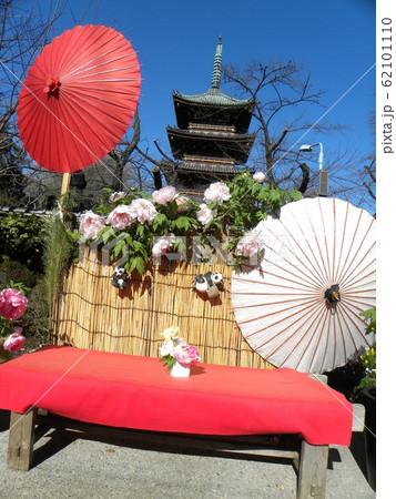 上野東照宮ぼたん苑の白色のボタンの花と5重の塔をバックに撮る撮影ポイント 62101110