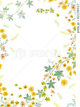 植物の背景 62136417