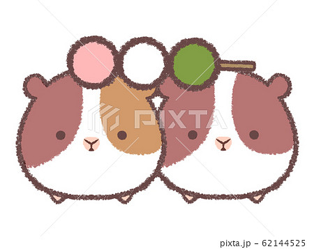 三色団子とモルモット 62144525
