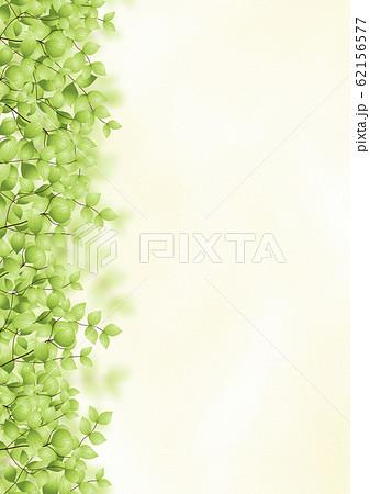 背景 緑の木々(縦) 62156577