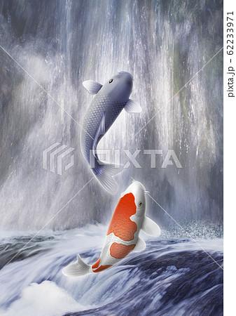 鯉の滝登り 62233971