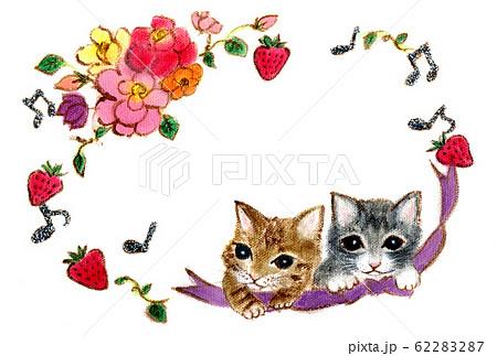 2匹の子猫とお花柄  62283287