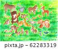 種を蒔く、森の動物たち 62283319