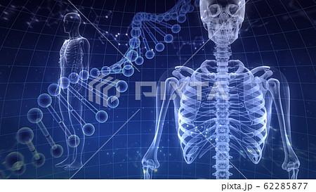人体 骨 メディカル 人間 体 医療 医学 科学 頭蓋骨 レントゲン 3D イラスト CG 背景 62285877