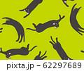 パターン ねこ 黒猫 ネコ きみどり 62297689