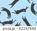 パターン ねこ 黒猫 ネコ みずいろ 62297690