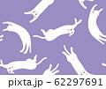 パターン ねこ 白猫 ネコ むらさき 62297691