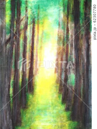 神秘的な木々 62307780