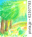 雨上がりの森の丘 62307783