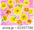ナスタチウムの花 62307786