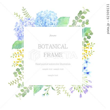 あじさいと植物のフレーム 水彩イラスト 62309131