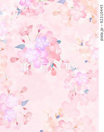 背景-和-和紙-和風-和柄-春-桜 62310445