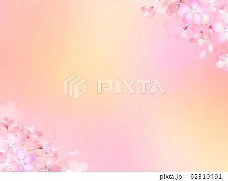 背景-和-和紙-和風-和柄-春-桜 62310491