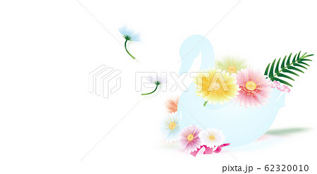 スワンの器にガーベラのカラフルな花のイラストバナー素材ホワイト背景 62320010