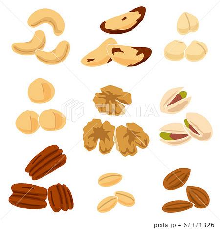 いろいろなナッツのイラスト 62321326